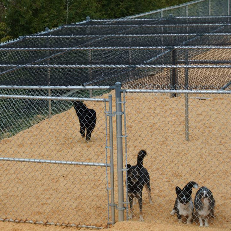 Pacific Northwest Kennels facility